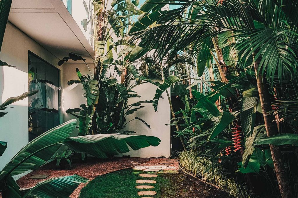 Landscaped & Garden maintained in Sydney